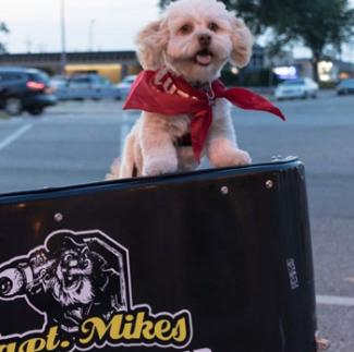 Grab Fido a doggie burger from Capt Mike's